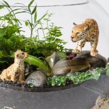 products-800-0544-jaguar-close