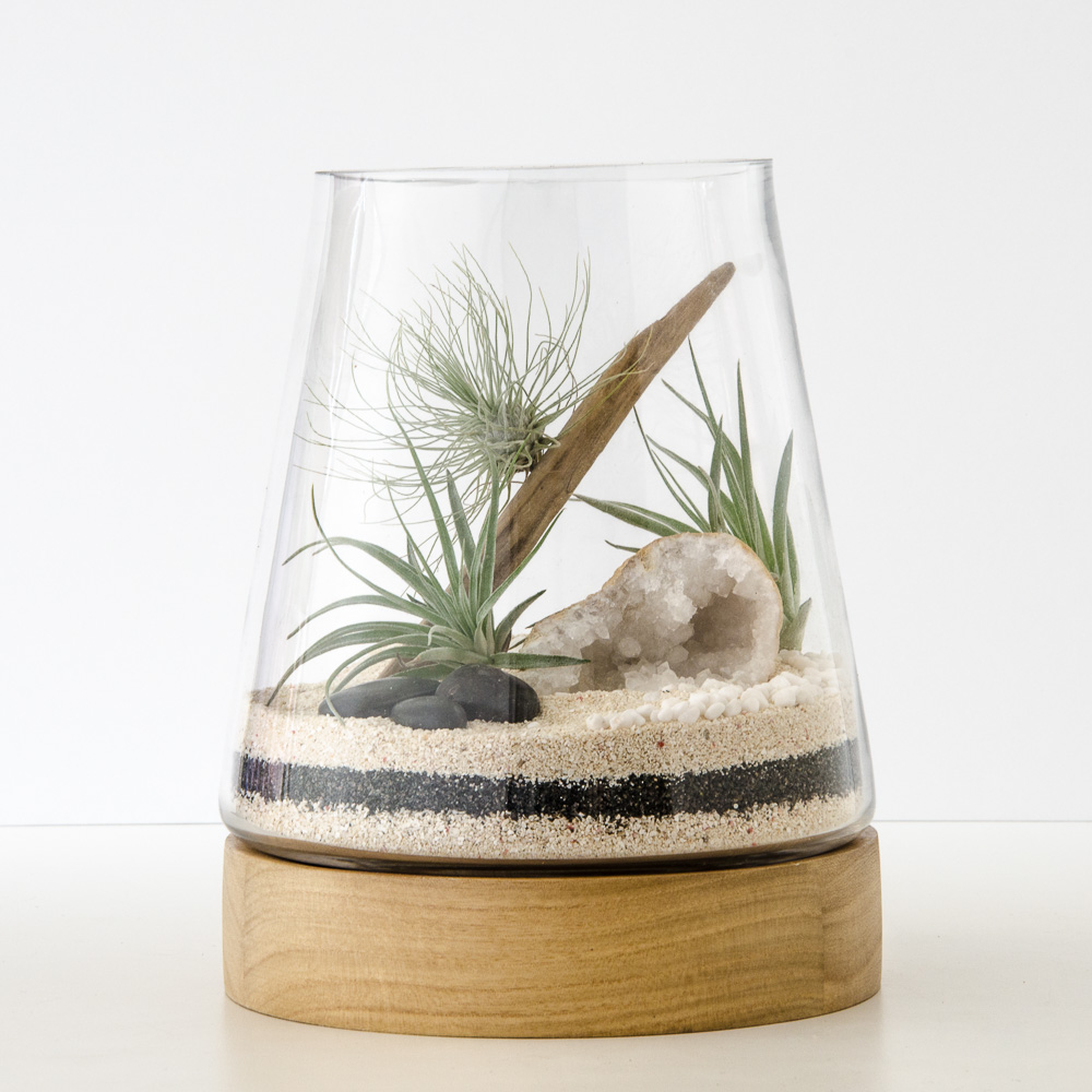Care Happy Place Terrariums