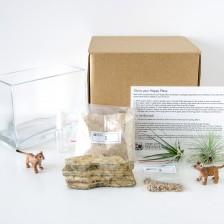 HPT-kits-for-kids-lioncub-kit-1000px-3865